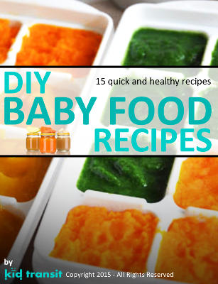 15 DIY Baby Food Recipes ebook