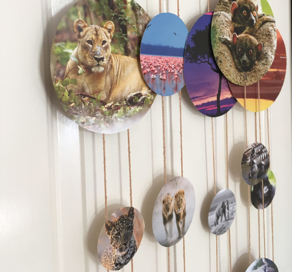 Zoo Themed Party Wall Hanging