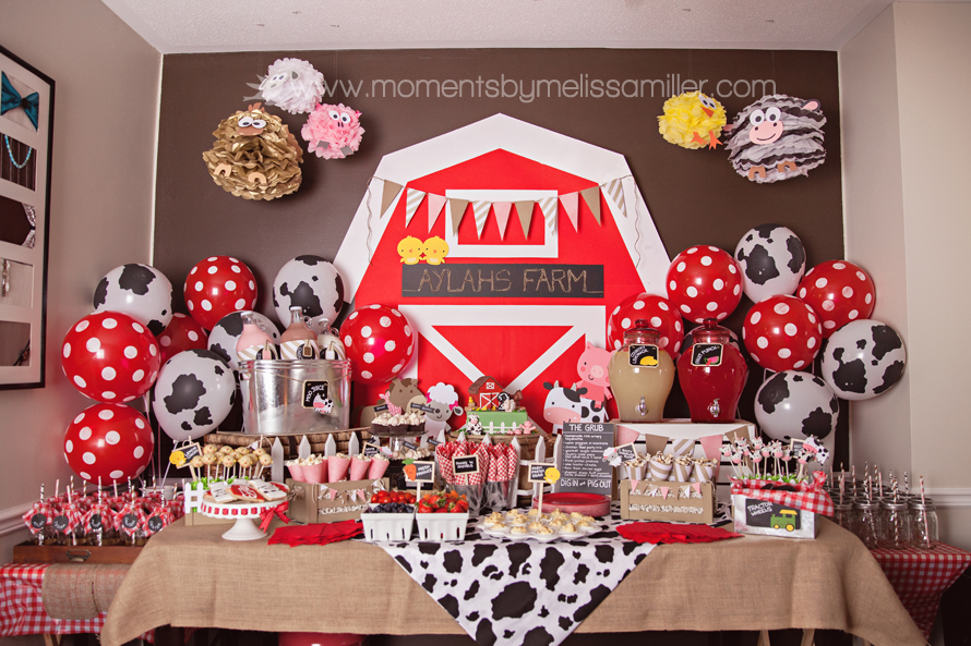 Farm Themed Birthday Party Decore