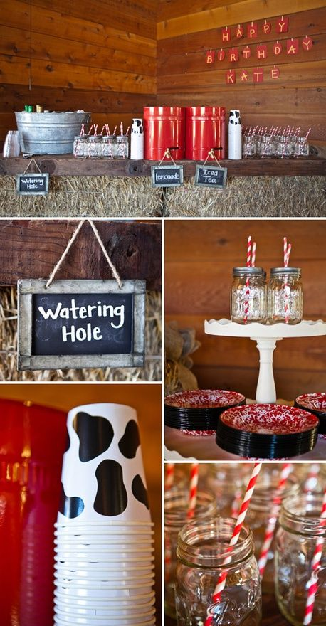 Farm Theme Birthday Food and Drink
