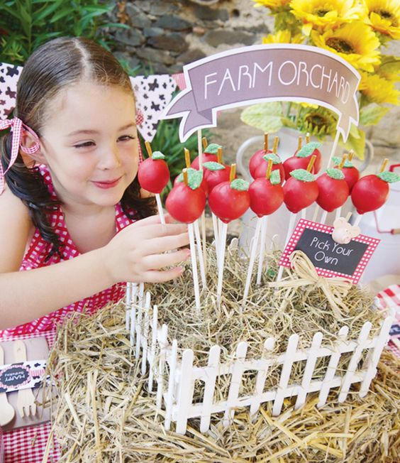 Farm Themed Birthday Party Food And Drink Ideas
