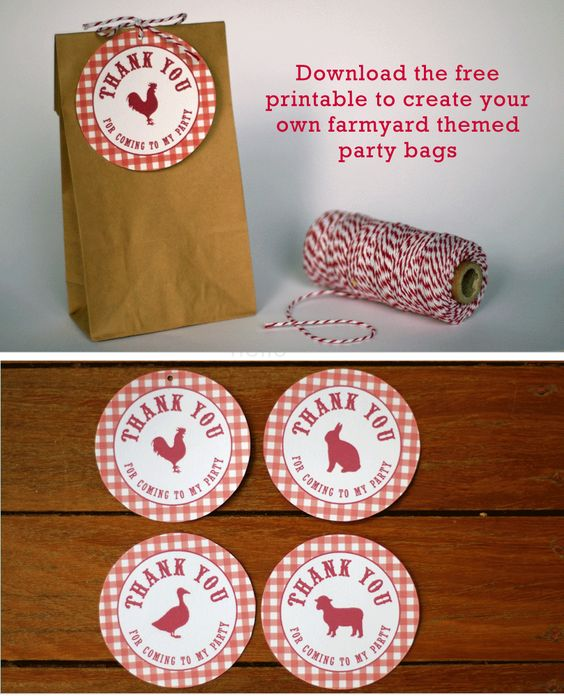 Farm Themed First Birthday Party Favours party bags