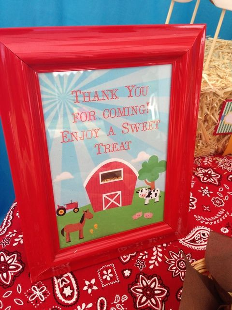 Farm Themed First Birthday Party Favours