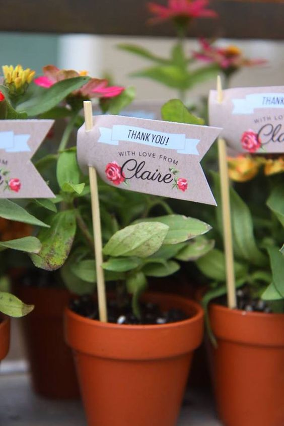 Garden Themed First Birthday Party Favour Ideas plant in pot