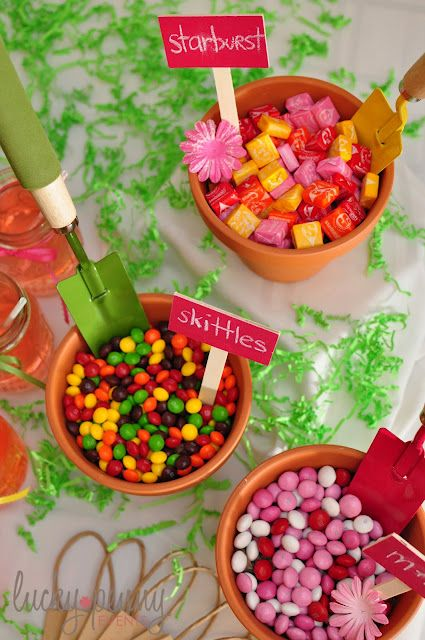 Garden themed first birthday party food and drink ideas for Food garden ideas