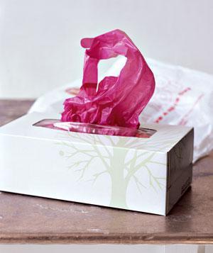 tissue-box-car-organiser