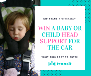 GIVEAWAY - Sandini Baby / Child Head Support