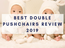 Best double pushchairs review