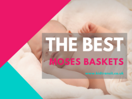 The best Moses baskets for newborns and babies