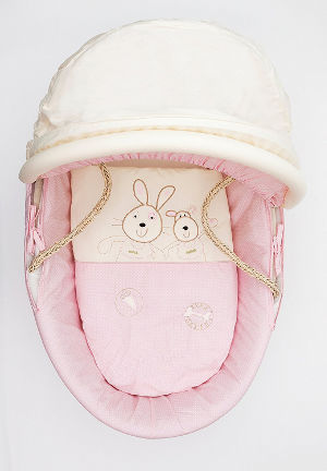 kinder valley daisy boo moses basket hood