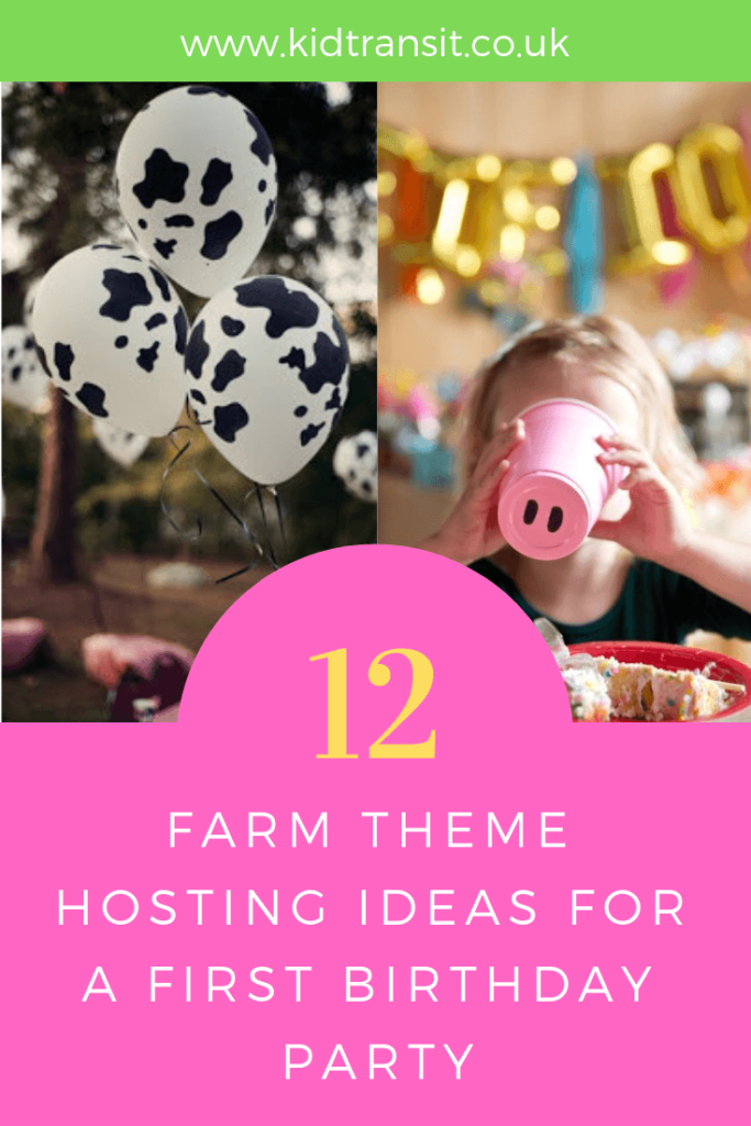 Hosting tips and ideas for a farm theme first birthday party