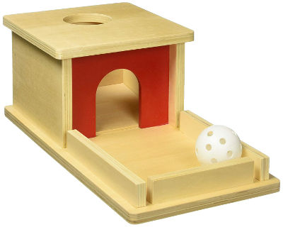 Object permanence box with tray and ball