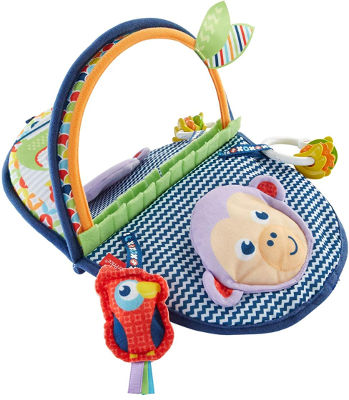 Fisher Price tummy time sensory toy monkey mirror